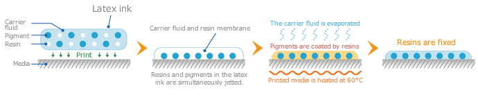 Mechanism of the latex ink adhesion